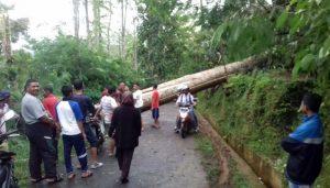 Angin Puting Beliung Hantam Puluhan Rumah Di Dua Kecamatan