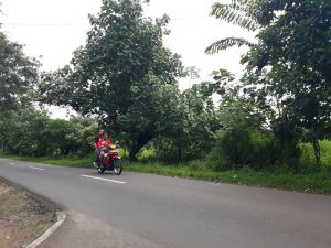 Jalan Limbangan