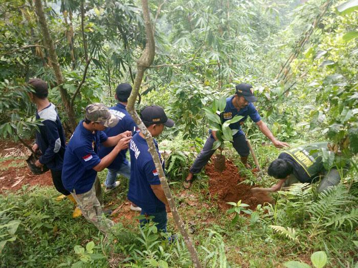Penanaman Hutan Desa